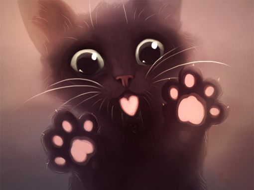 Meow wallpapers to your cell phone   cat cute   19863656 Zedge 510x383