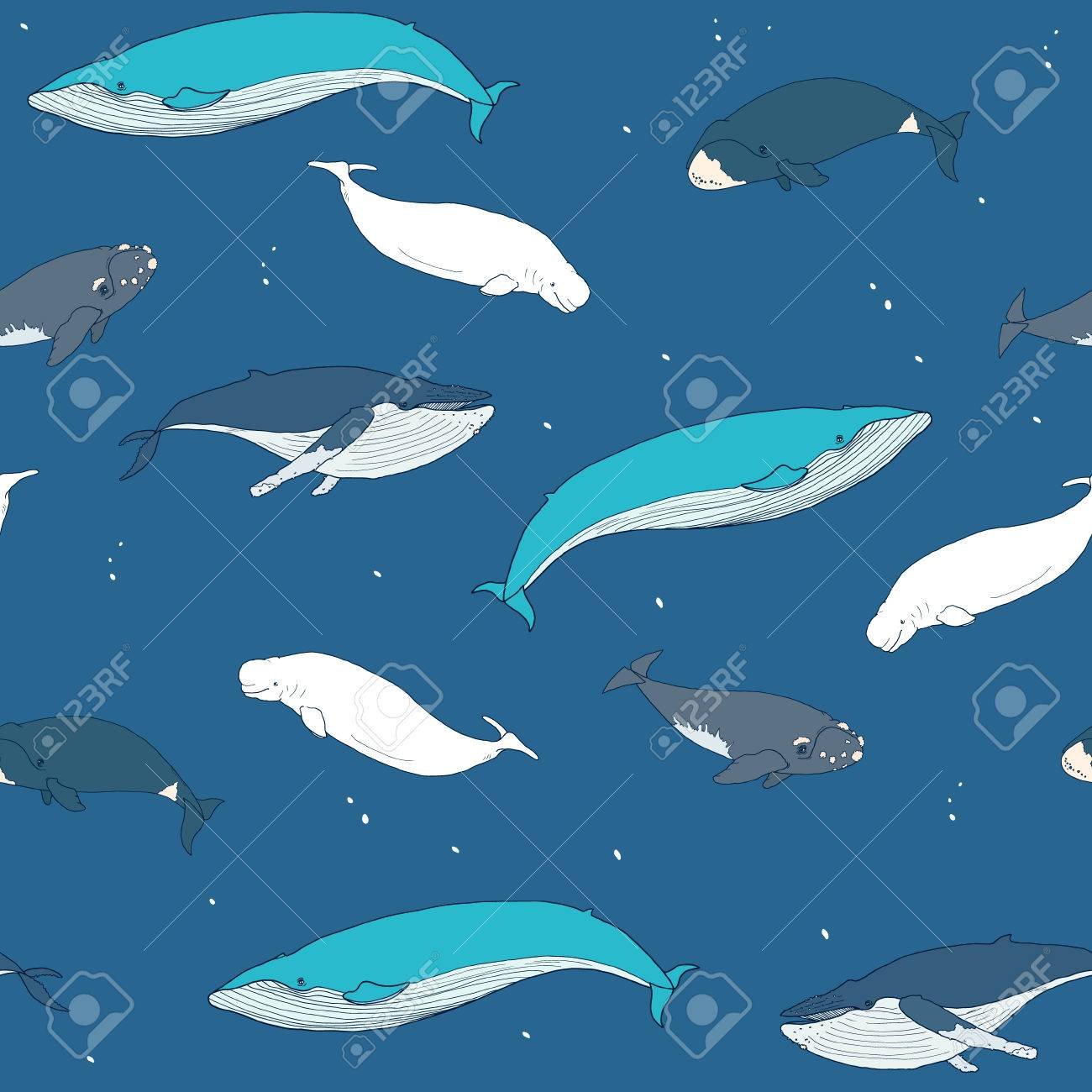 Seamless Pattern With Whales On Blue Background Vector 1300x1300