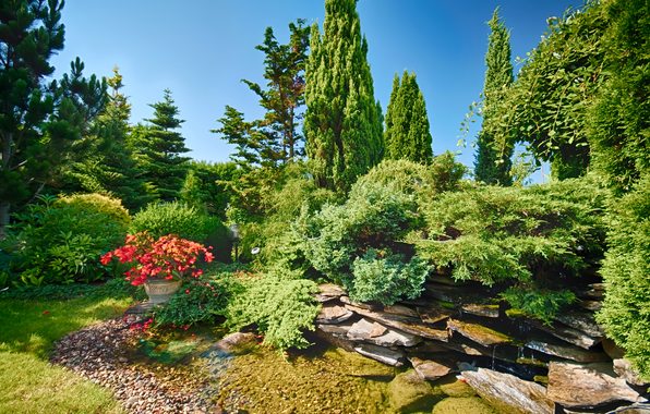 Wallpaper park bushes trees rocks water flowers sunny wallpapers 596x380