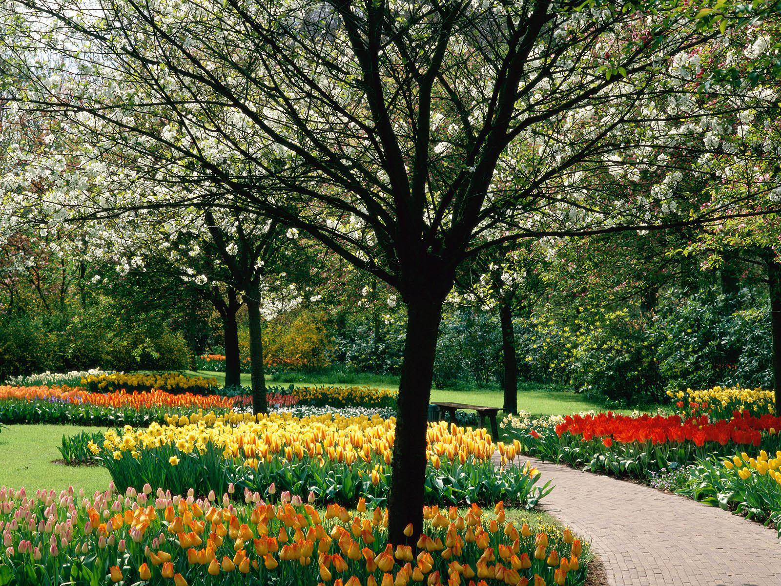 spring wallpapers spring desktop wallpapers spring desktop backgrounds 1600x1200