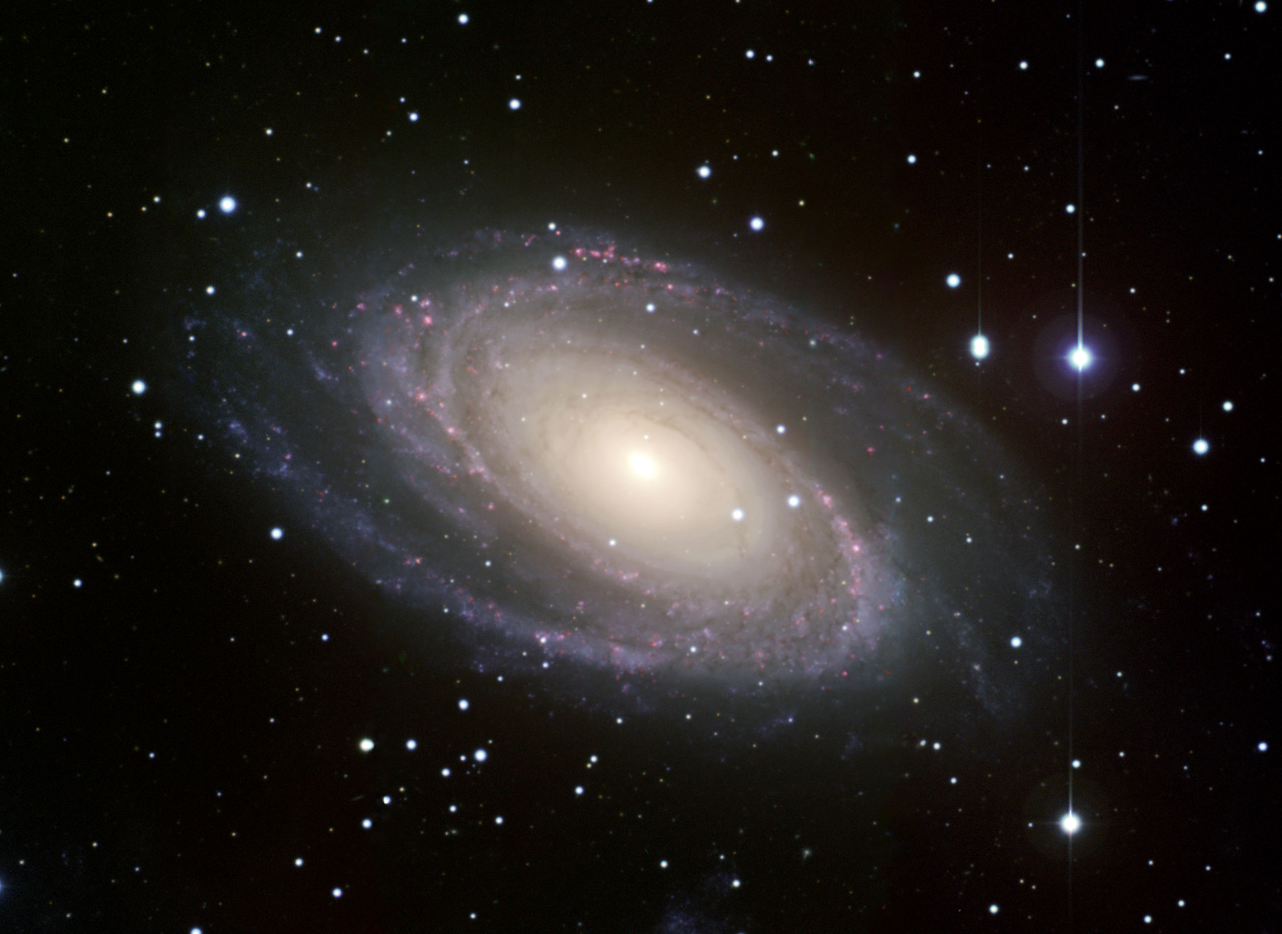 M81 Galaxy 2603x1896