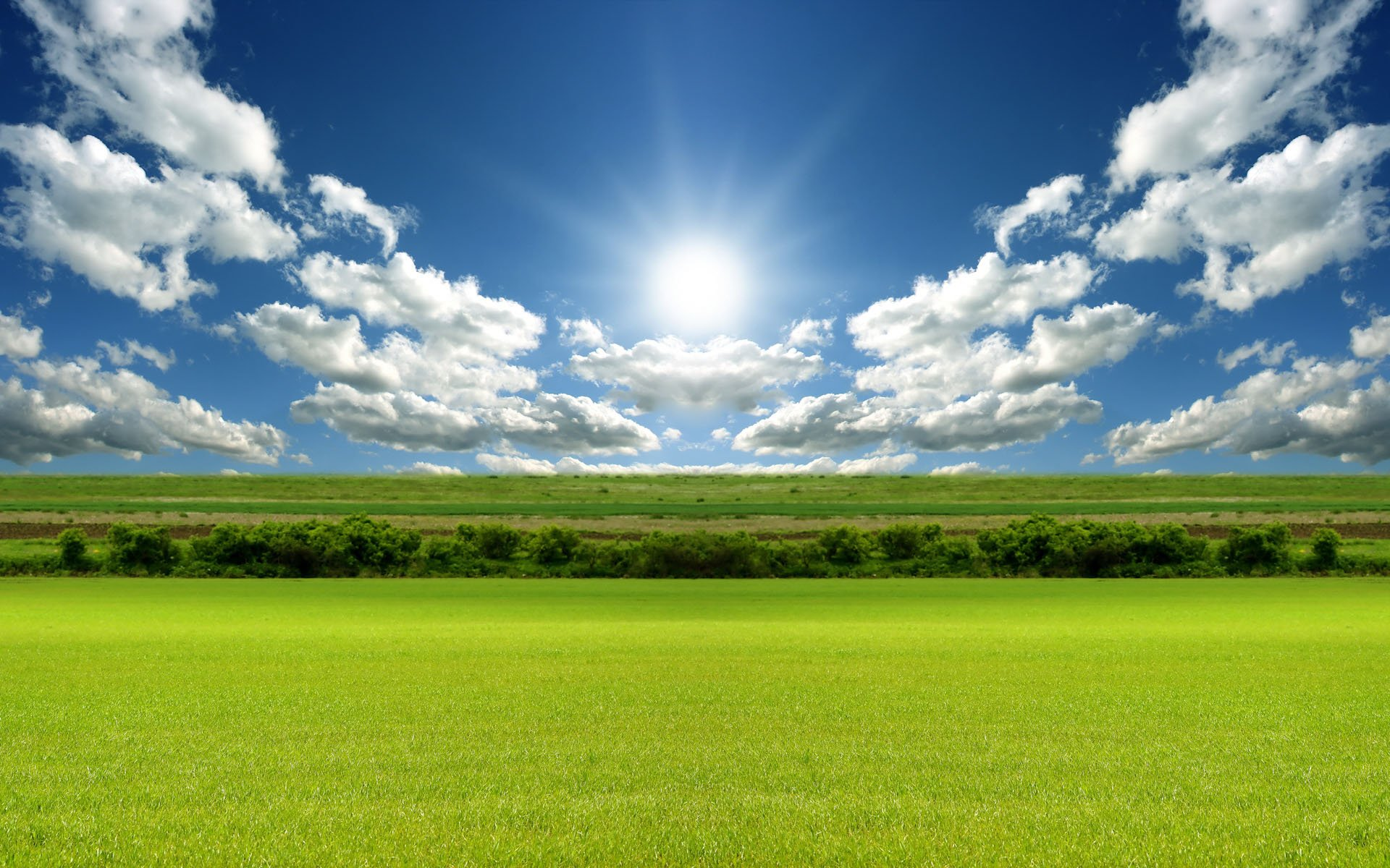 Sunny Day Free Wallpaper