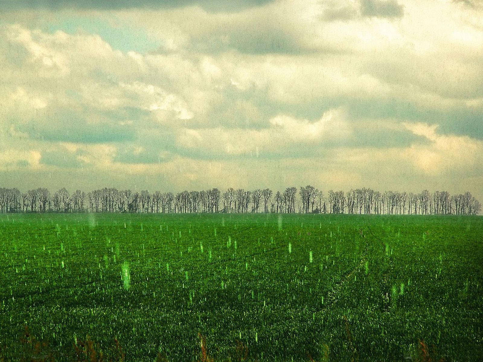 Rainy Day Desktop Wallpaper Wallpapersafari