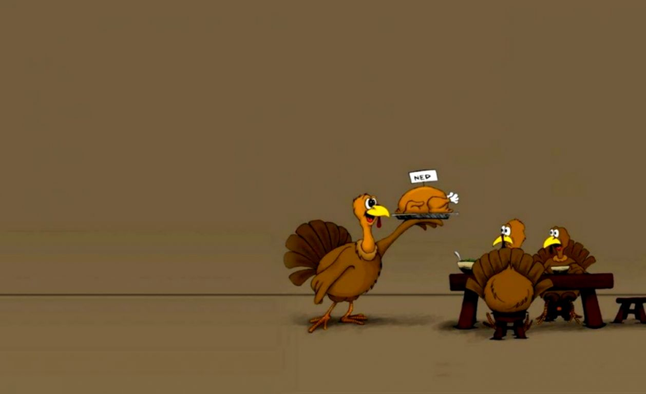Funny Thanksgiving Wallpaper Wallpapers Up 1258x769