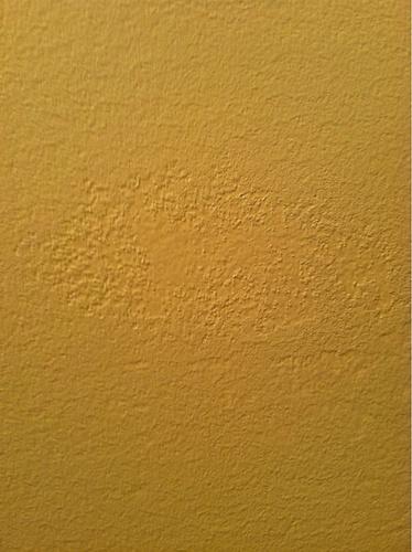 Zinsser Gardz Over Skim Coat Over Wallpaper Adhesive   Painting   DIY 374x500