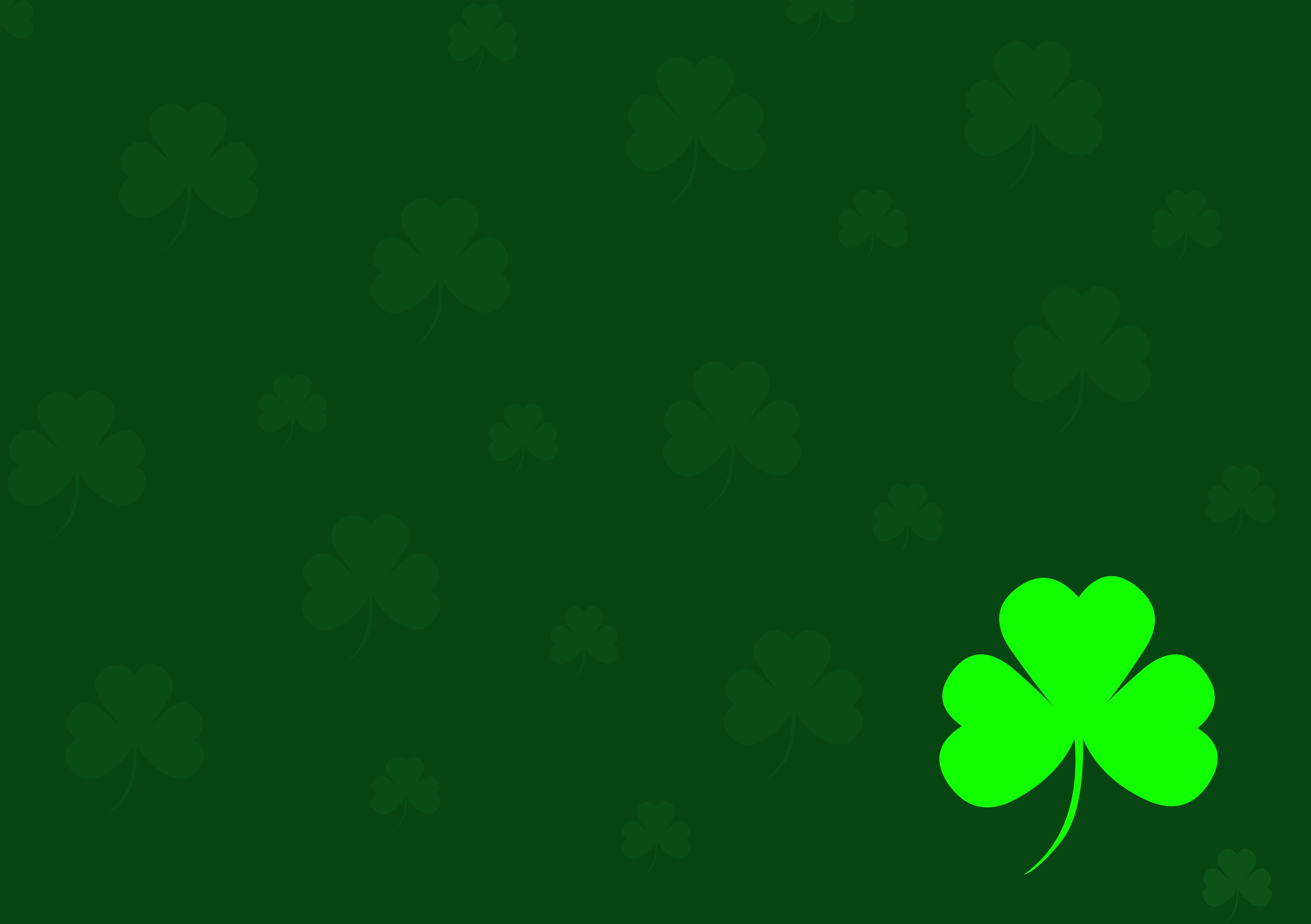 download Irish Shamrock Wallpapers [5122x3609] for your 5122x3609