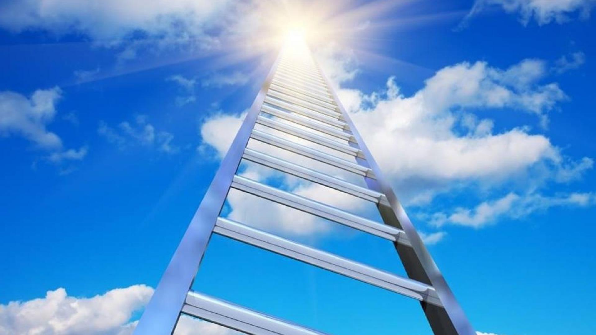 Смешные картинки лестница в небеса