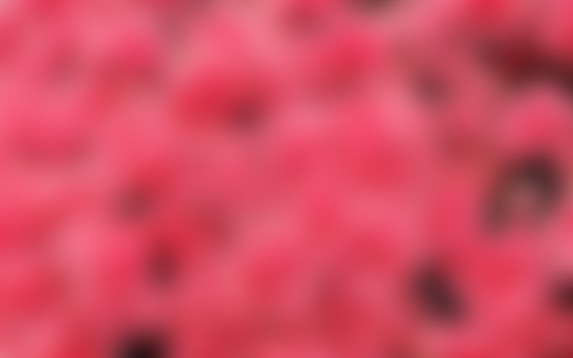 Pink Background Desktop Full HD desktop wallpaper Wallinda 1920x1200