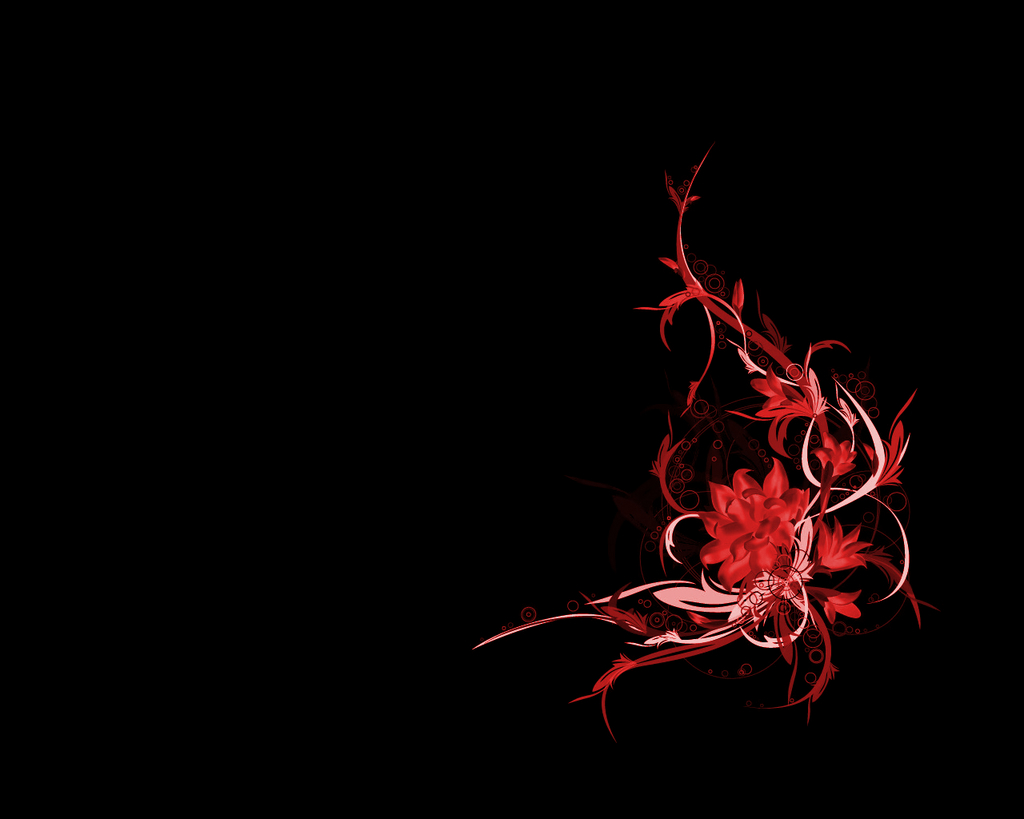 Red Flower Black Background - WallpaperSafari