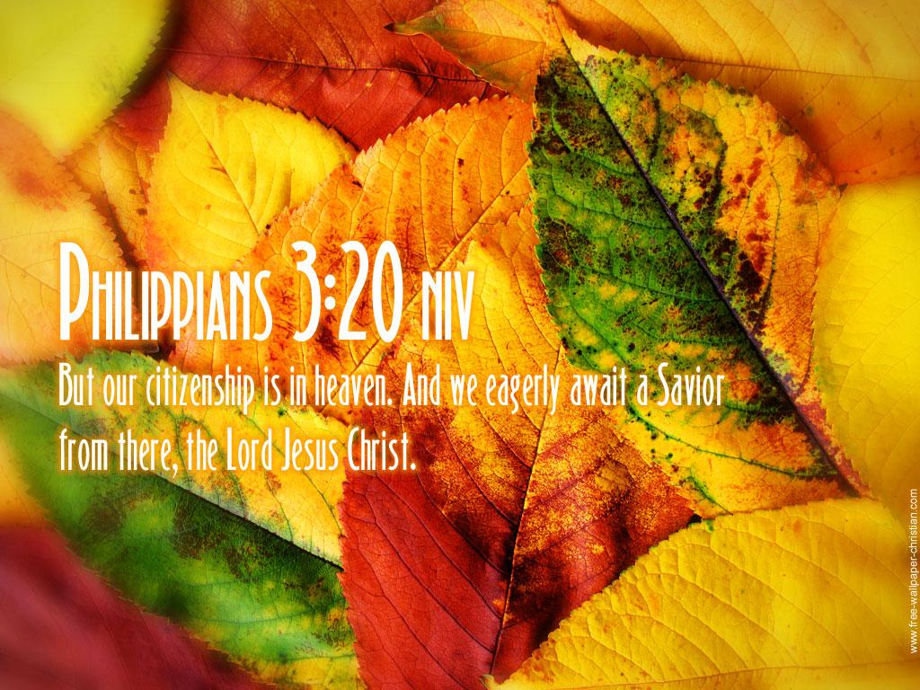 bible verse wallpapers inspirational psalm bible verses psalm bible 1024x768