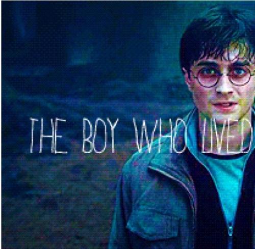 Harry Potter Iphone Wallpaper: Harry Potter Live Wallpaper