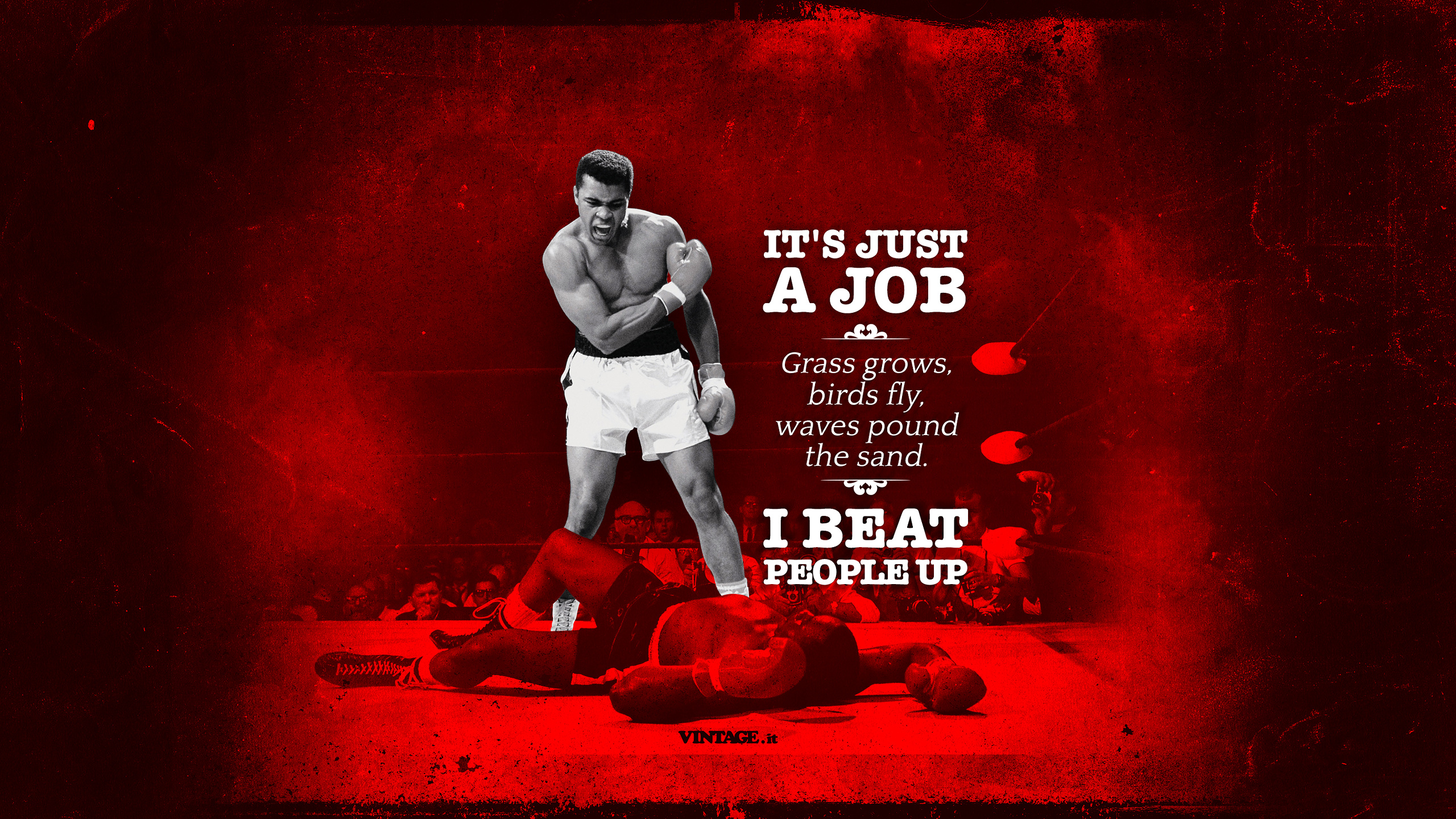 Muhammad Ali its just a job wallpaper   Desktop HD iPad iPhone 2560x1440