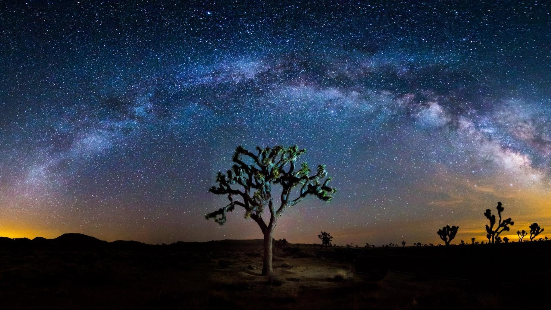 joshua tree national park milky way geographic wallpaper 73244 1920x1080