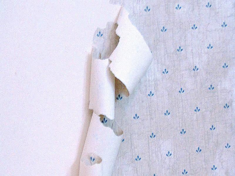 Top Peel Off Wallpaper Removal 800x600