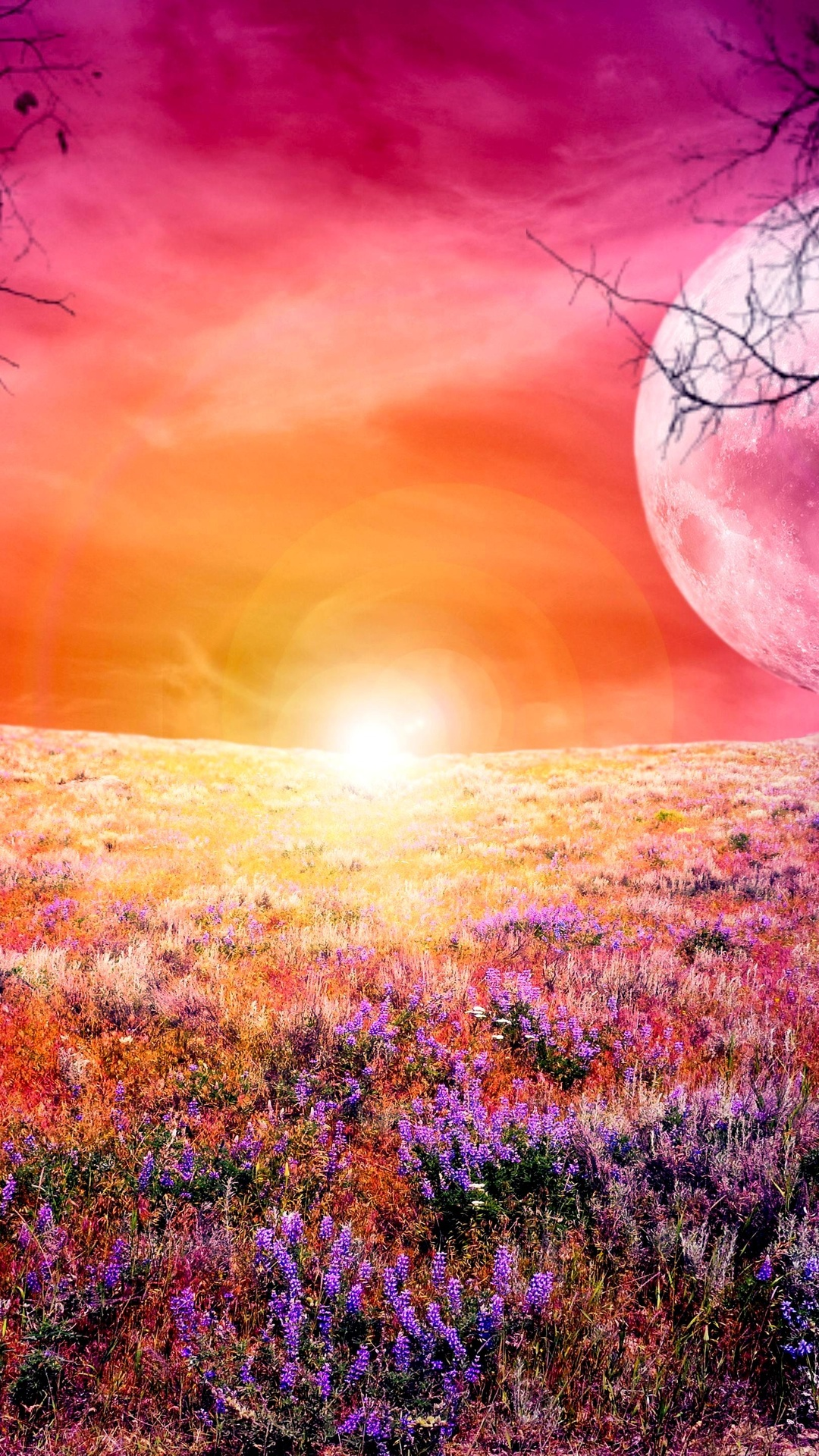 Colorful full moon 4K Ultra HD wallpaper 4k WallpaperNet 1080x1920