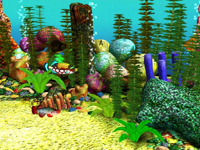 3D Fish Aquarium Screensaver Download 640x480