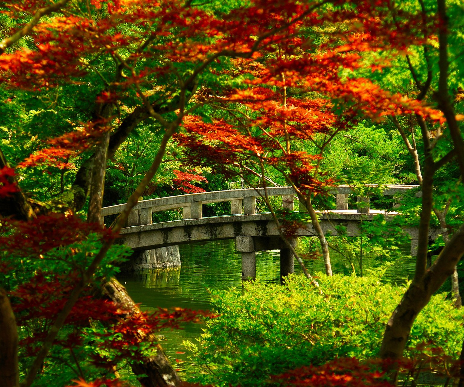 10000 Best Nature Wallpapers Backgrounds Photos By: Nature Desktop Nexus Wallpaper