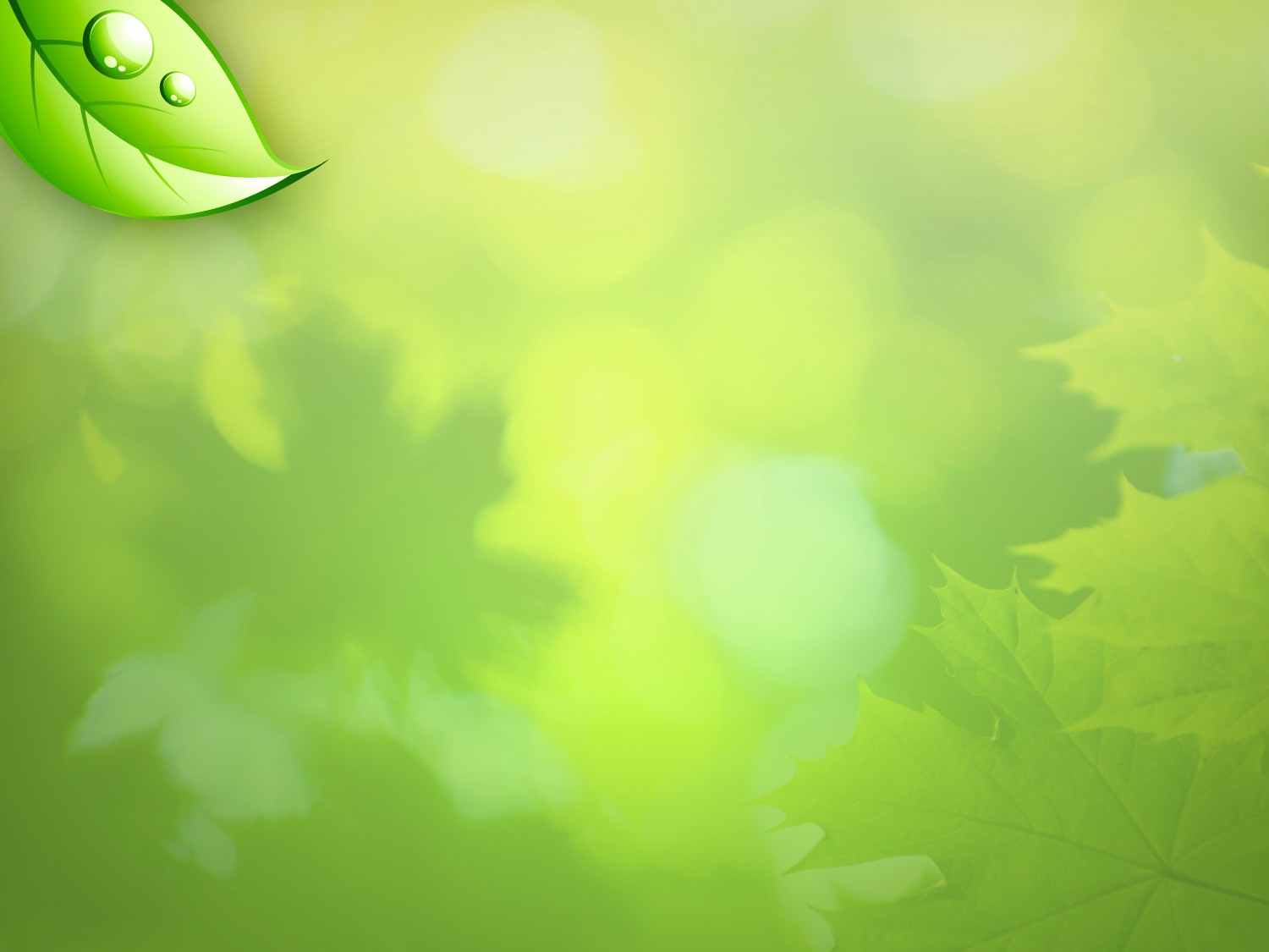 Free Download New Life Wallpaper 1500x1125 For Your