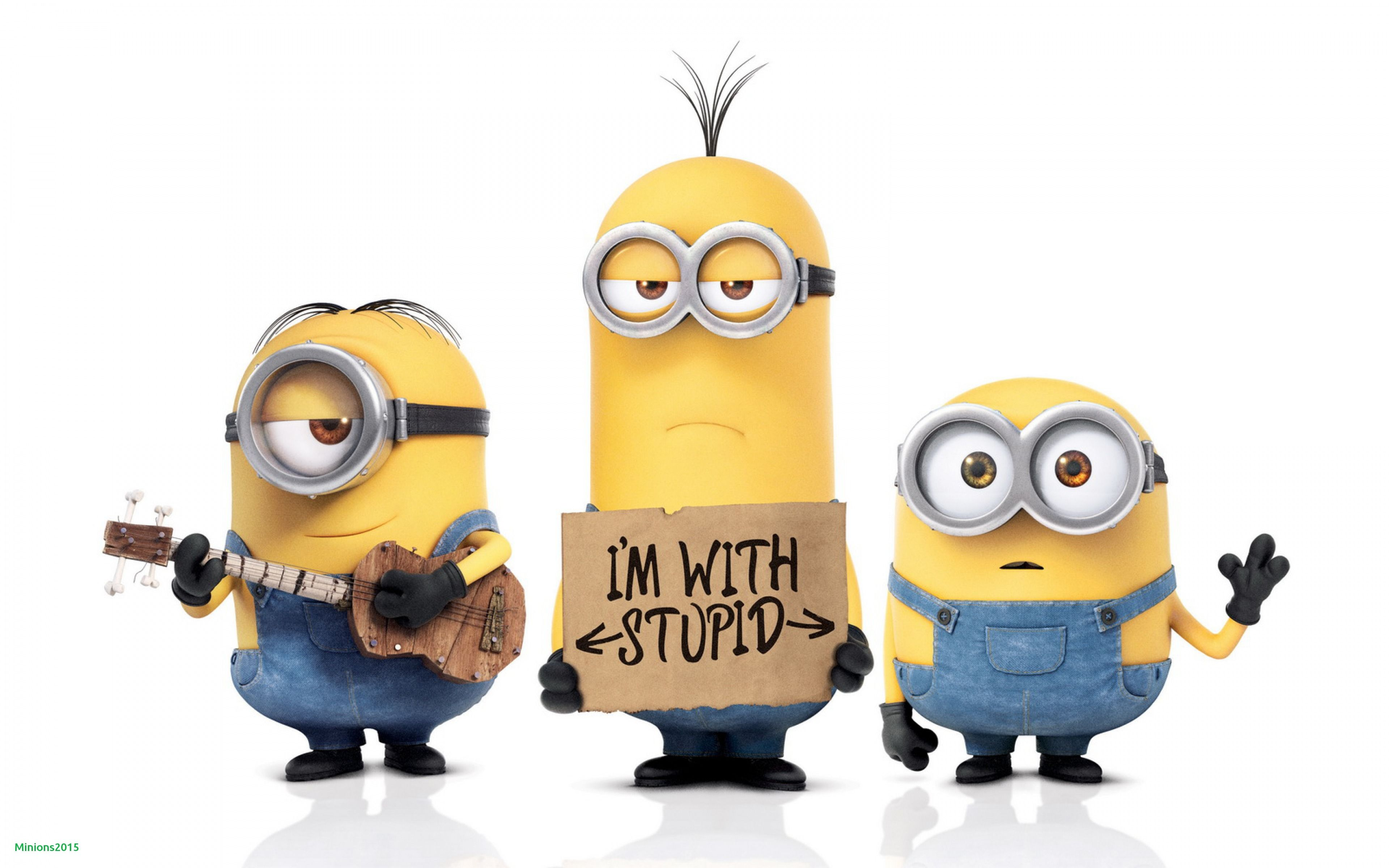 Funny Minions Wallpapers   Top Funny Minions Backgrounds 3840x2400