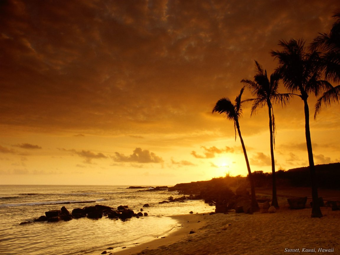 Beach Sunset Wallpaper 1152x864