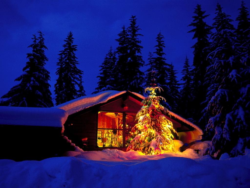 Winter wallpapers   Winter Wallpaper 2768499 1024x768