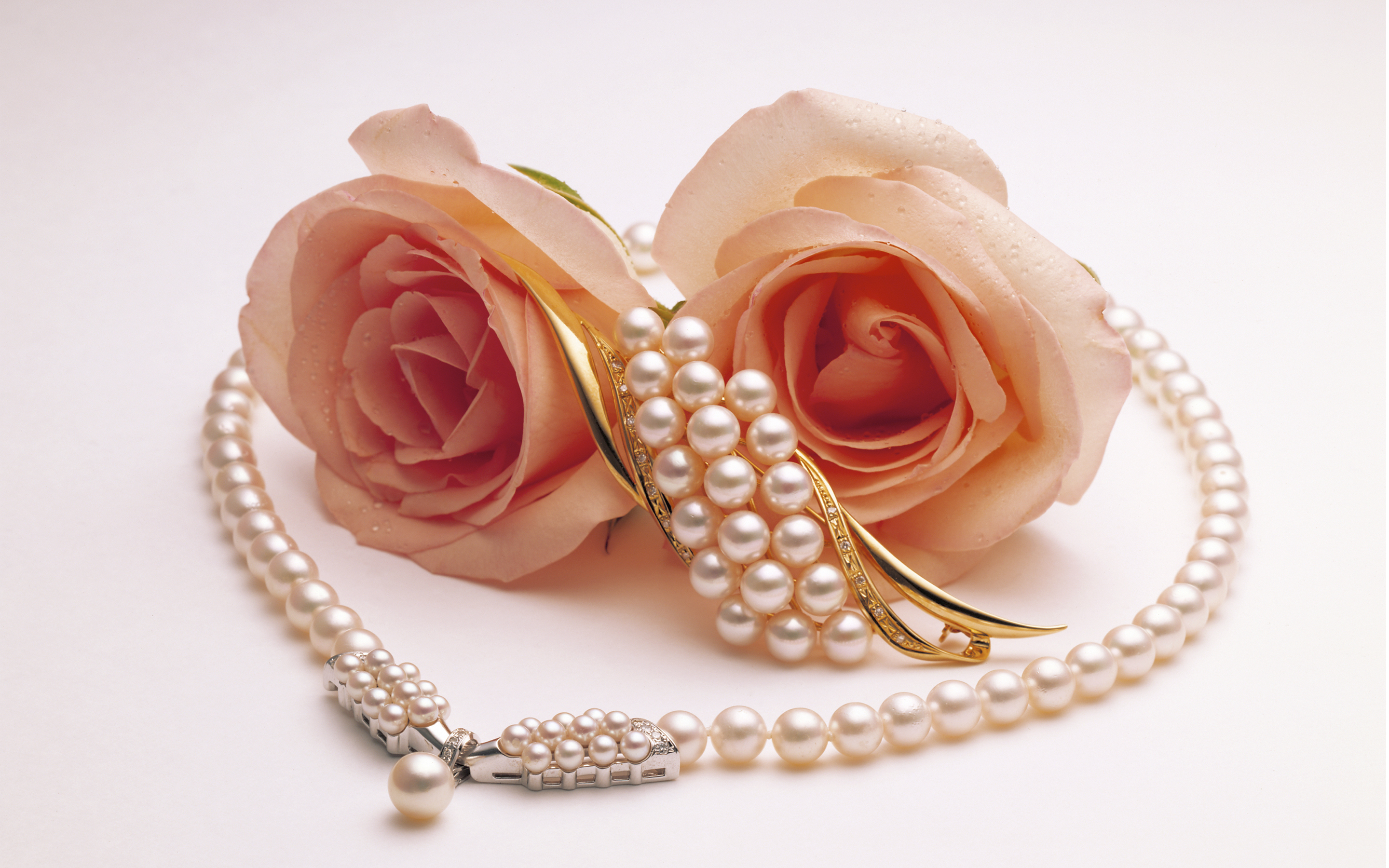 Wallpaper two roses pearls brooches wallpapers flowers   download 2880x1800