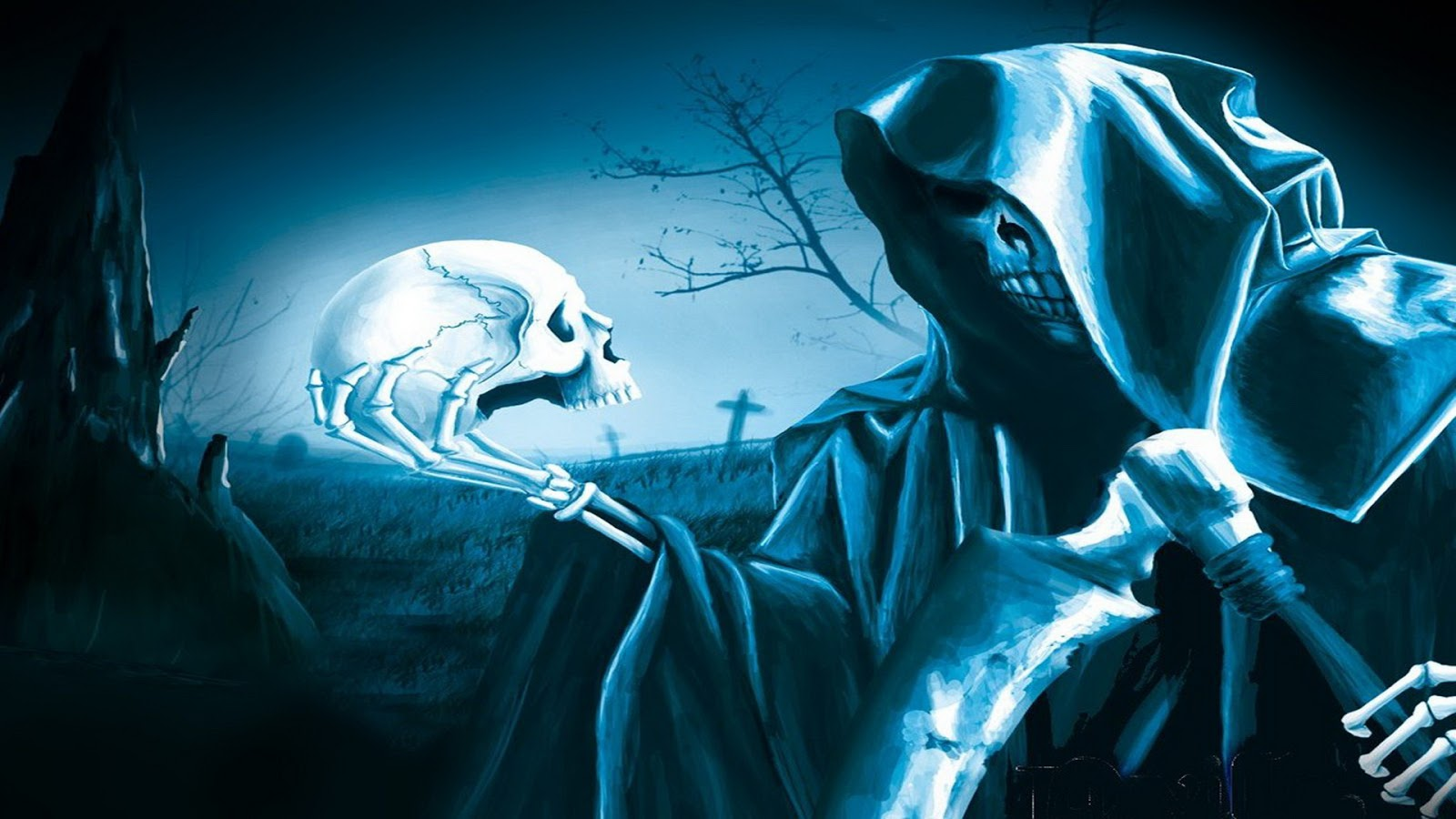 HD WAllppaers Skull HD Wallpaper 1080p 1600x900