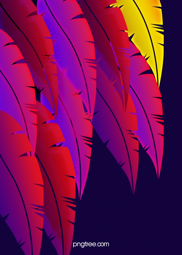 Dark Gradient Feather Patterns Background Bright Colors Gorgeous 640x897