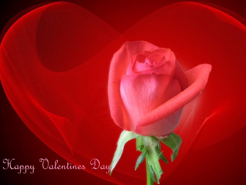 Romantic Happy Valentines Day HD Wallpapers HD WALLPAPERS 1024x768