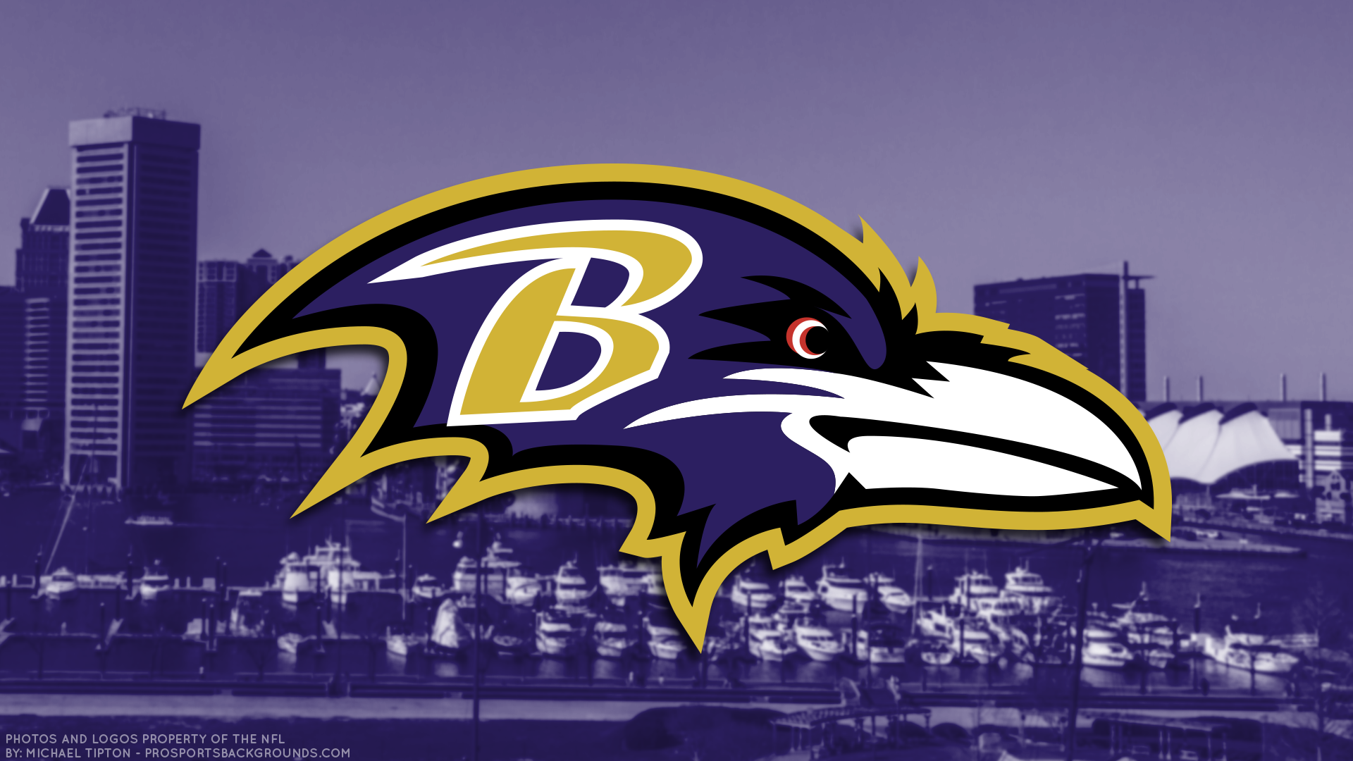 Baltimore Ravens HD Wallpaper Background Image 1920x1080 ID 1920x1080