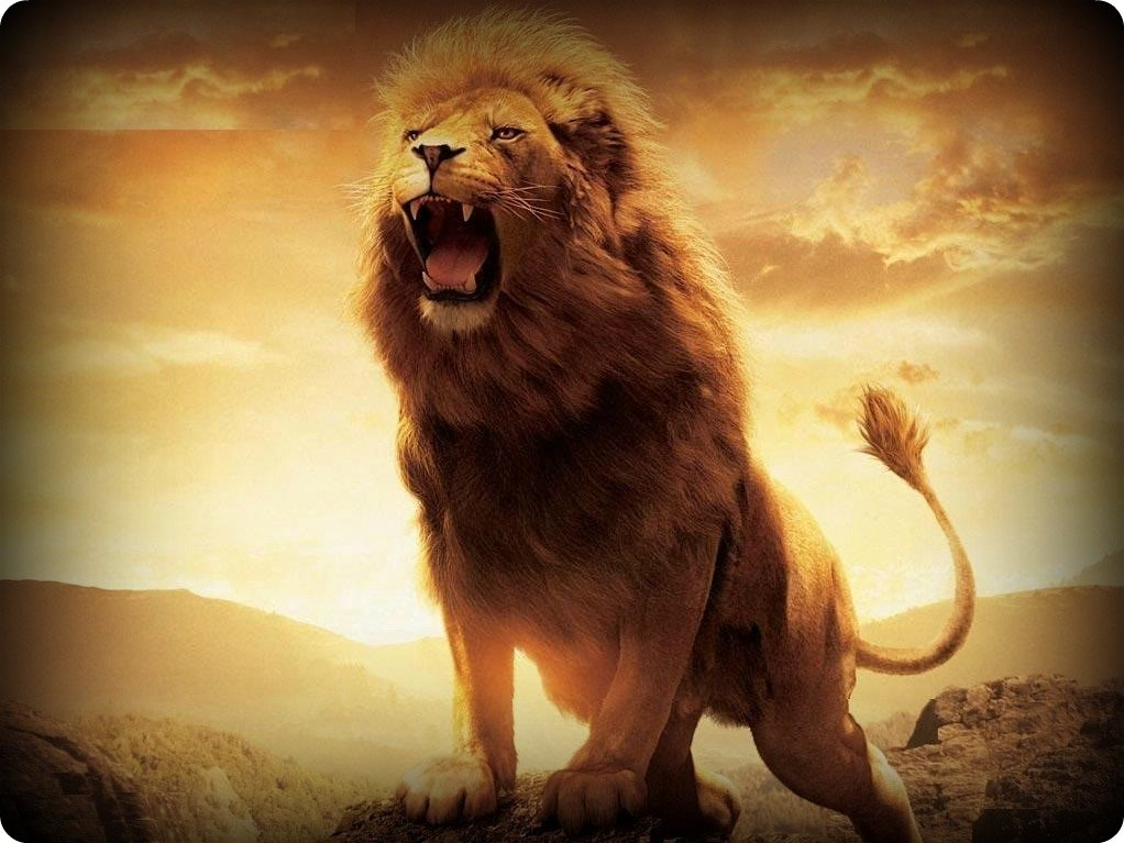 Roaring Lion Wallpaper - WallpaperSafari