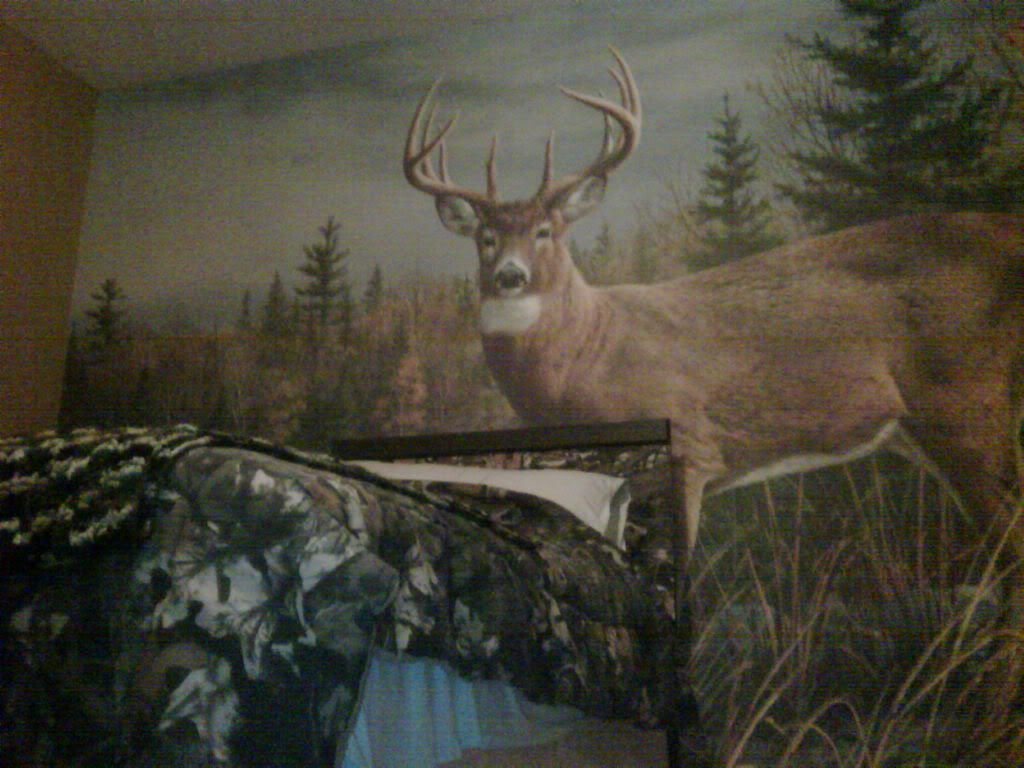 Thread Son wanted a Hunting bedroom 1024x768