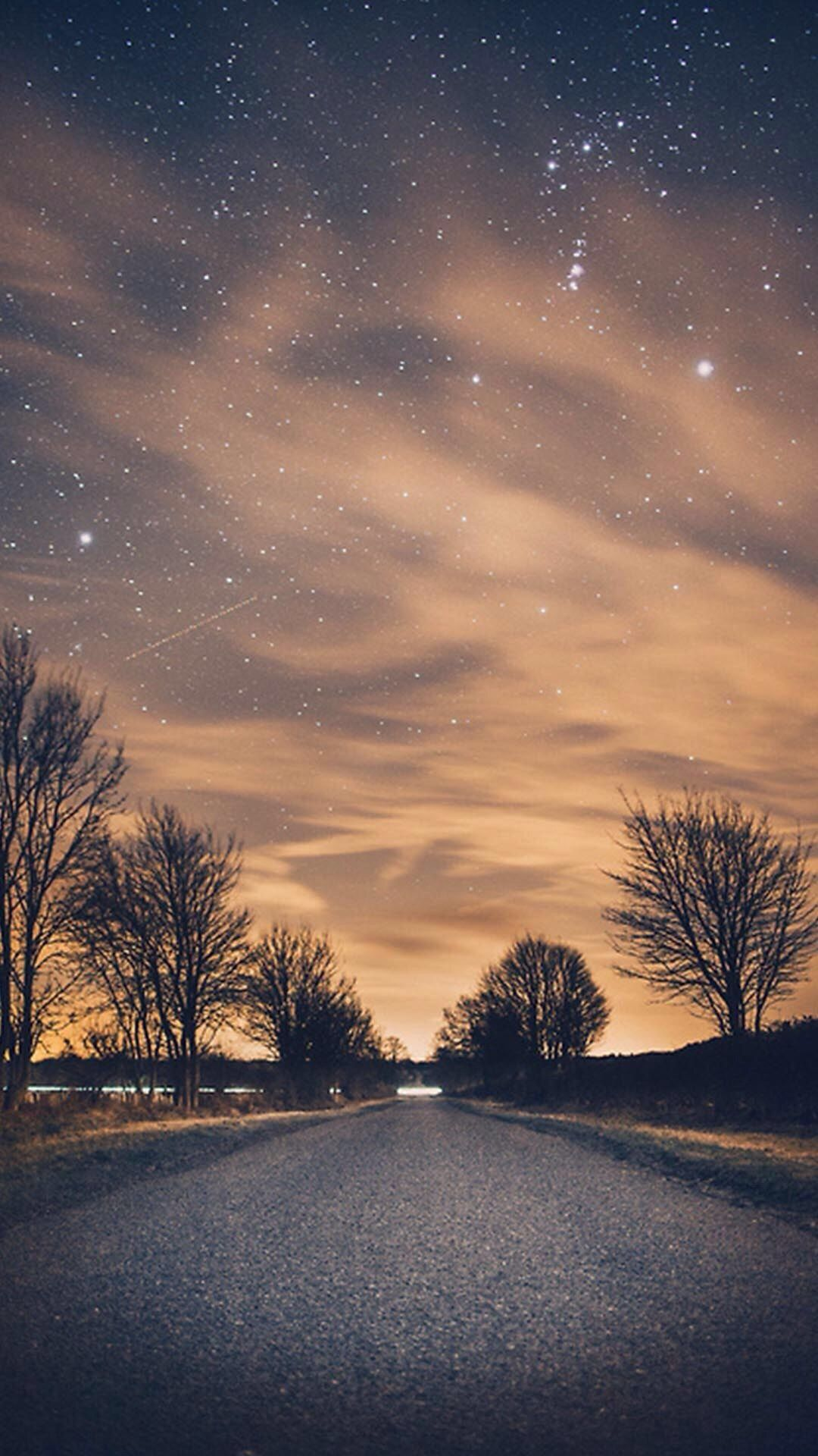 Nature Night Shiny Road Endless Tree Roadside iPhone 6 1080x1920