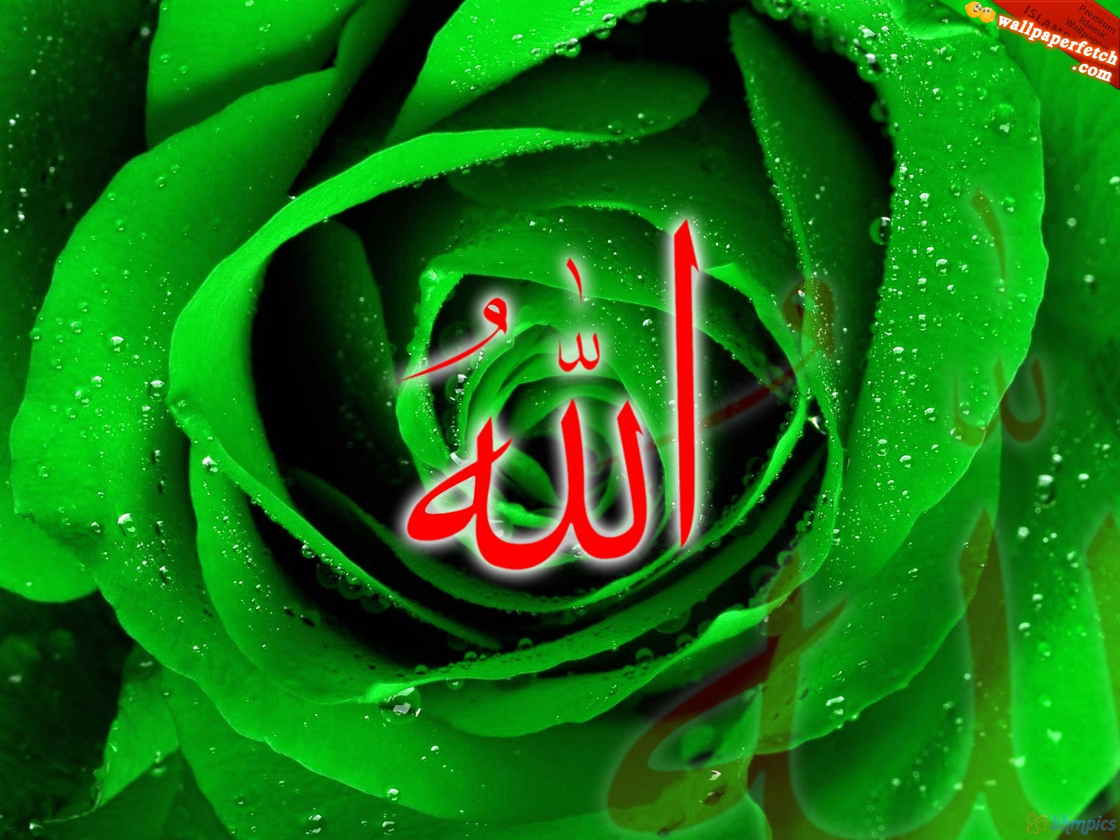 900 Wallpaper Allah Wale HD Gratis