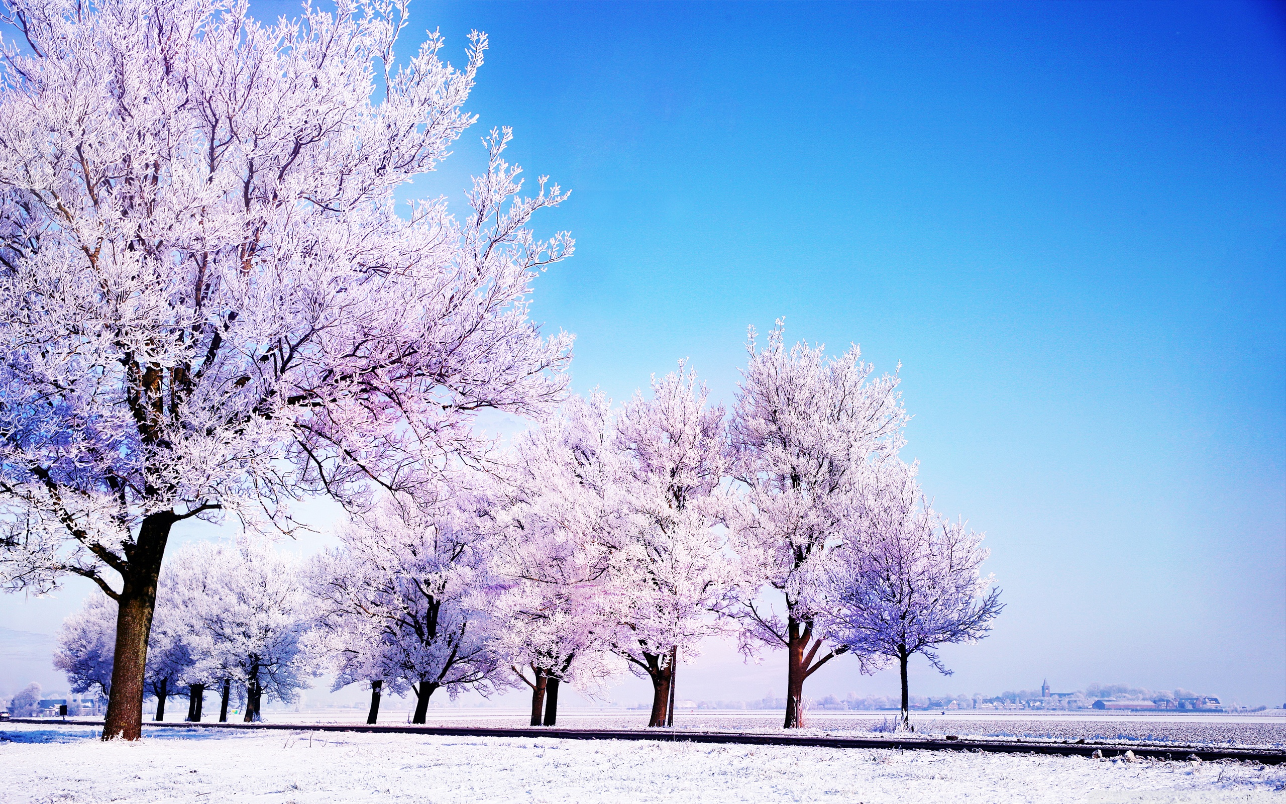 Winter Backgrounds wallpaper 2560x1600 51266 2560x1600