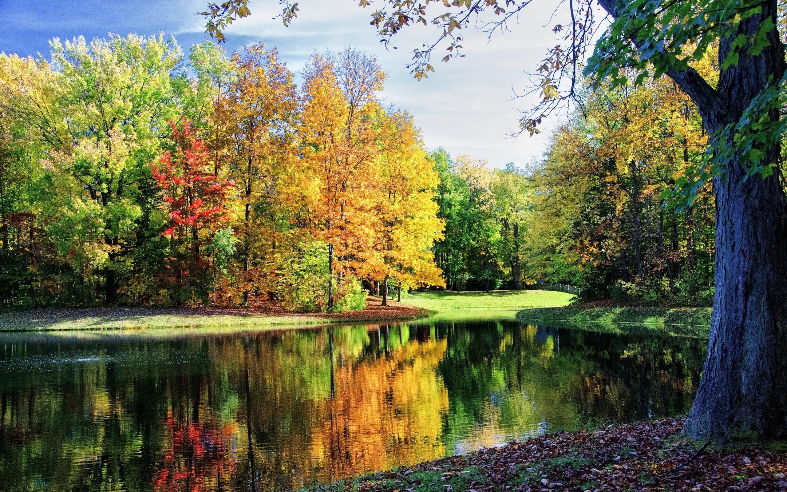 Beautiful fall Widescreen Wallpaper   10399 2560x1600