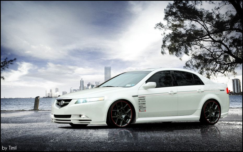 Photos Acura TL Wallpaper HD   HD Wallpaper Bunny Amazing HD 930x581