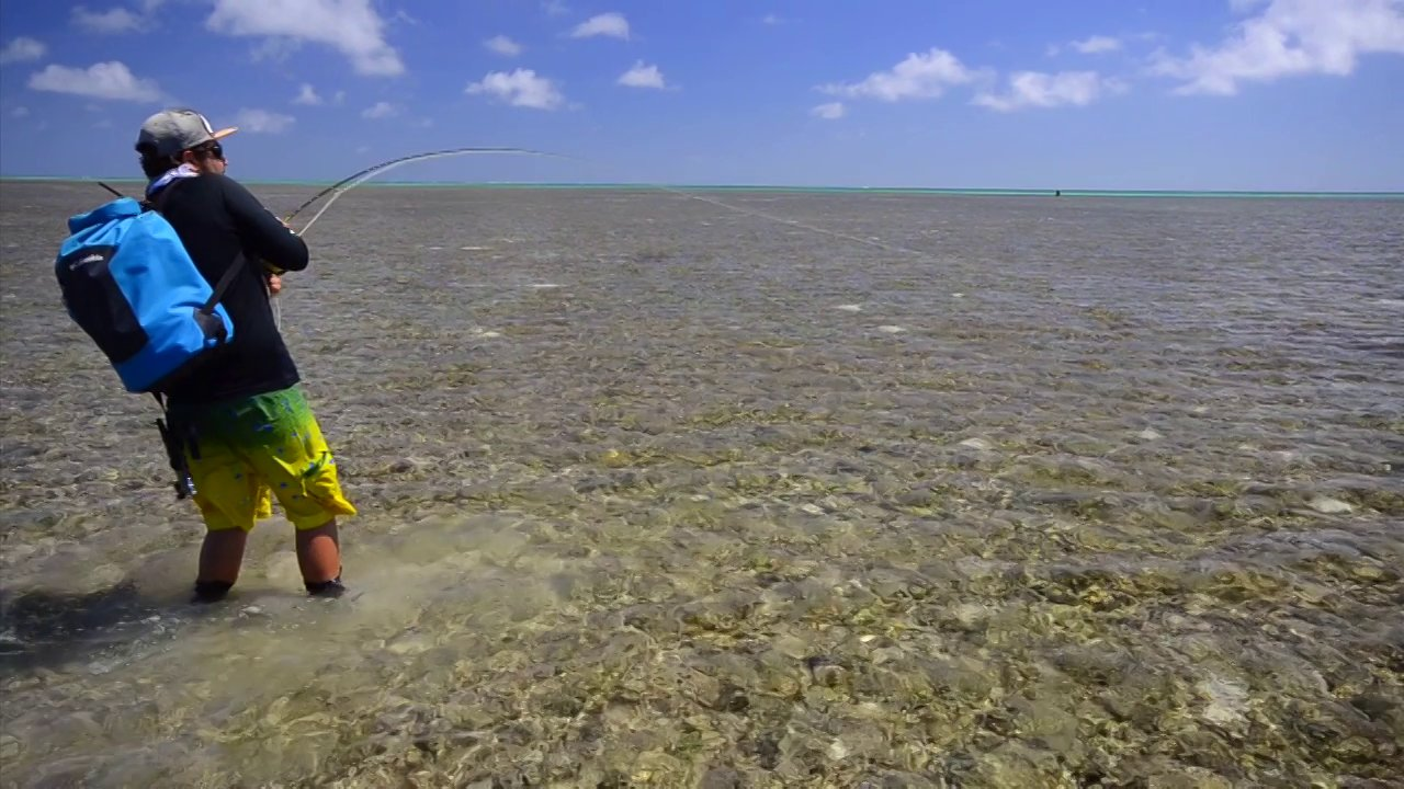 Saltwater Fly Fishing Wallpaper Fly Fishing fo Saltwater 1280x720