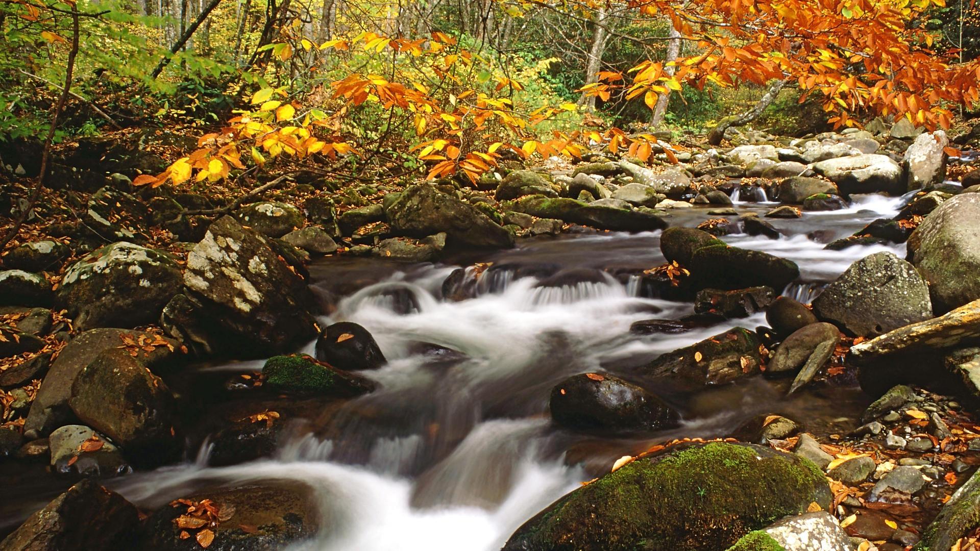48 free mountain autumn wallpapers on wallpapersafari - Smoky mountains wallpaper ...