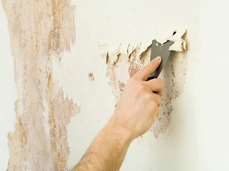 Getting Wallpaper Off The Wall Wallpapersafari