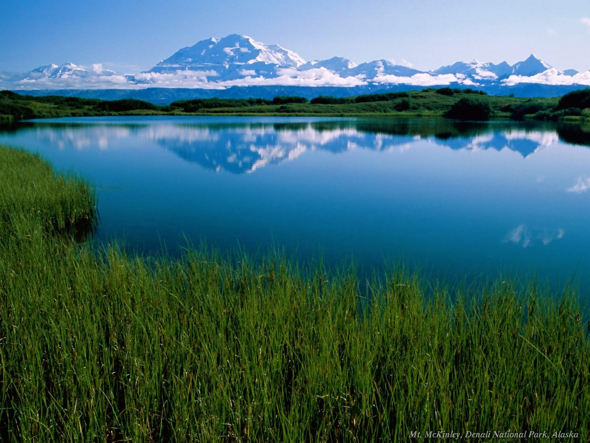 Denali National Park Hd 7 Background   Trendy Wallpapers 1152x864