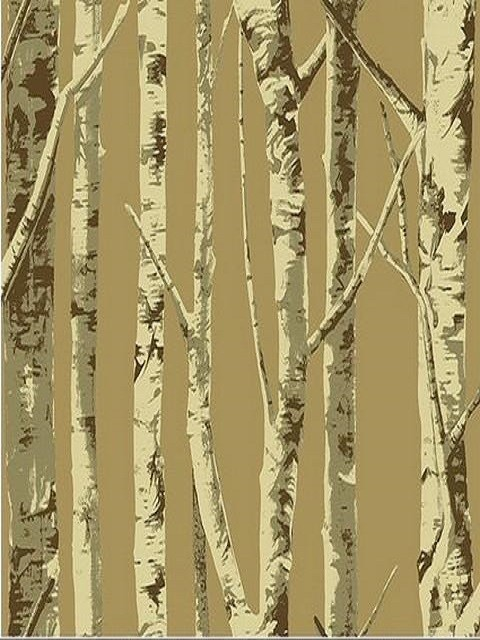 Brown Contemporary Birch Tree Wallpaper   Contemporary   Wallpaper 480x640
