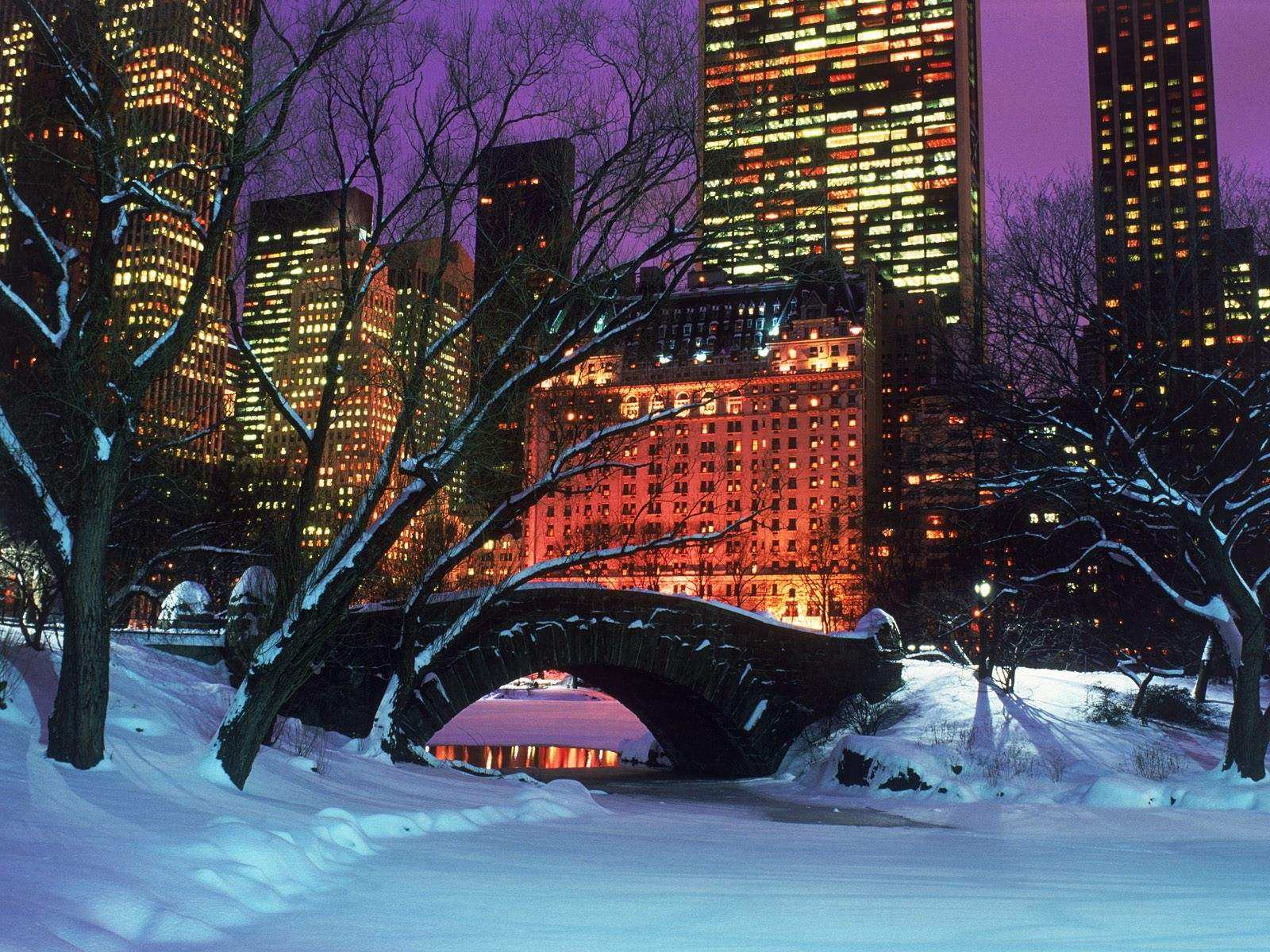 Download Snow Park New York Widescreen Christmas Wallpaper 1600x1200