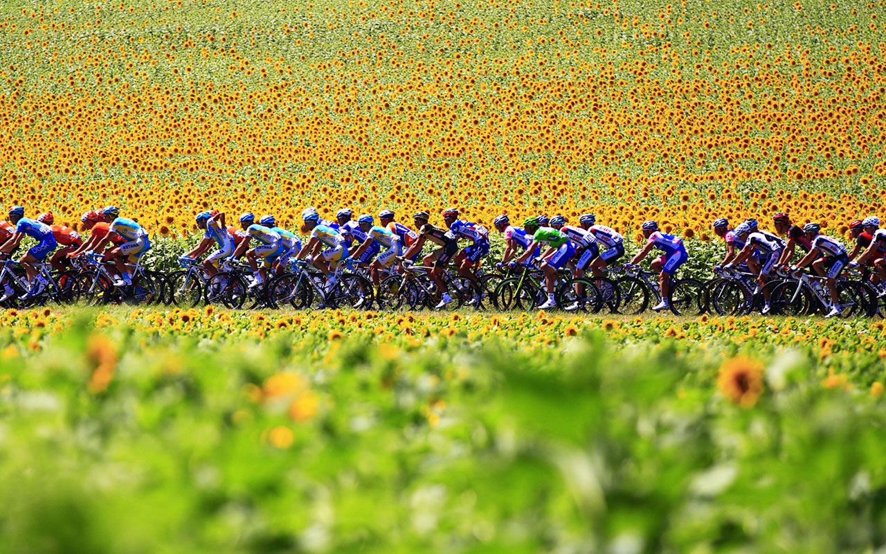 description sports wallpapers tour de france cycling 14 tour de france 1280x800