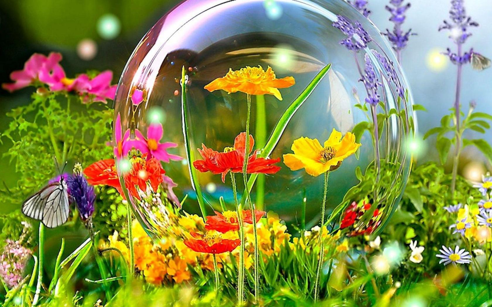 SPRING FLOWERS WALLPAPER   120759   HD Wallpapers   [wallpapersinhq 1680x1050