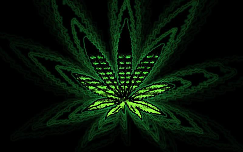 cool marijuana wallpapers wallpapersafari
