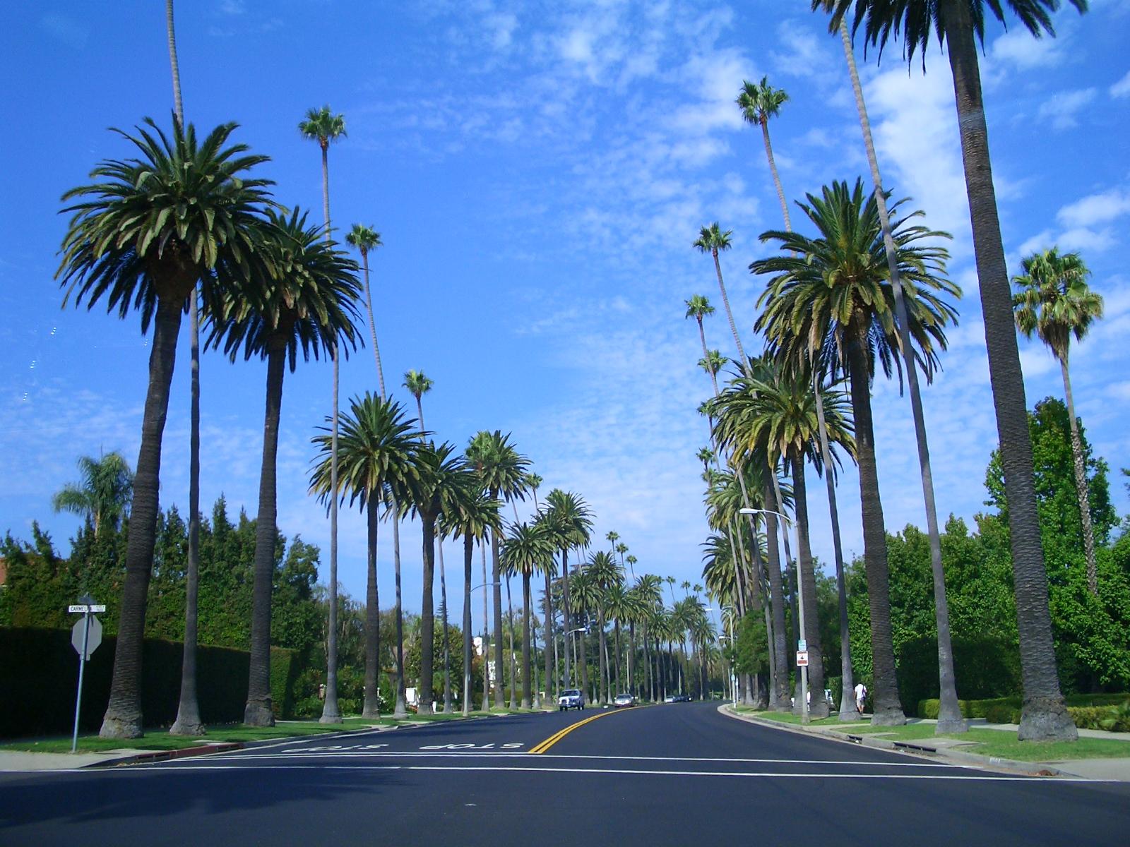 California Drought Free