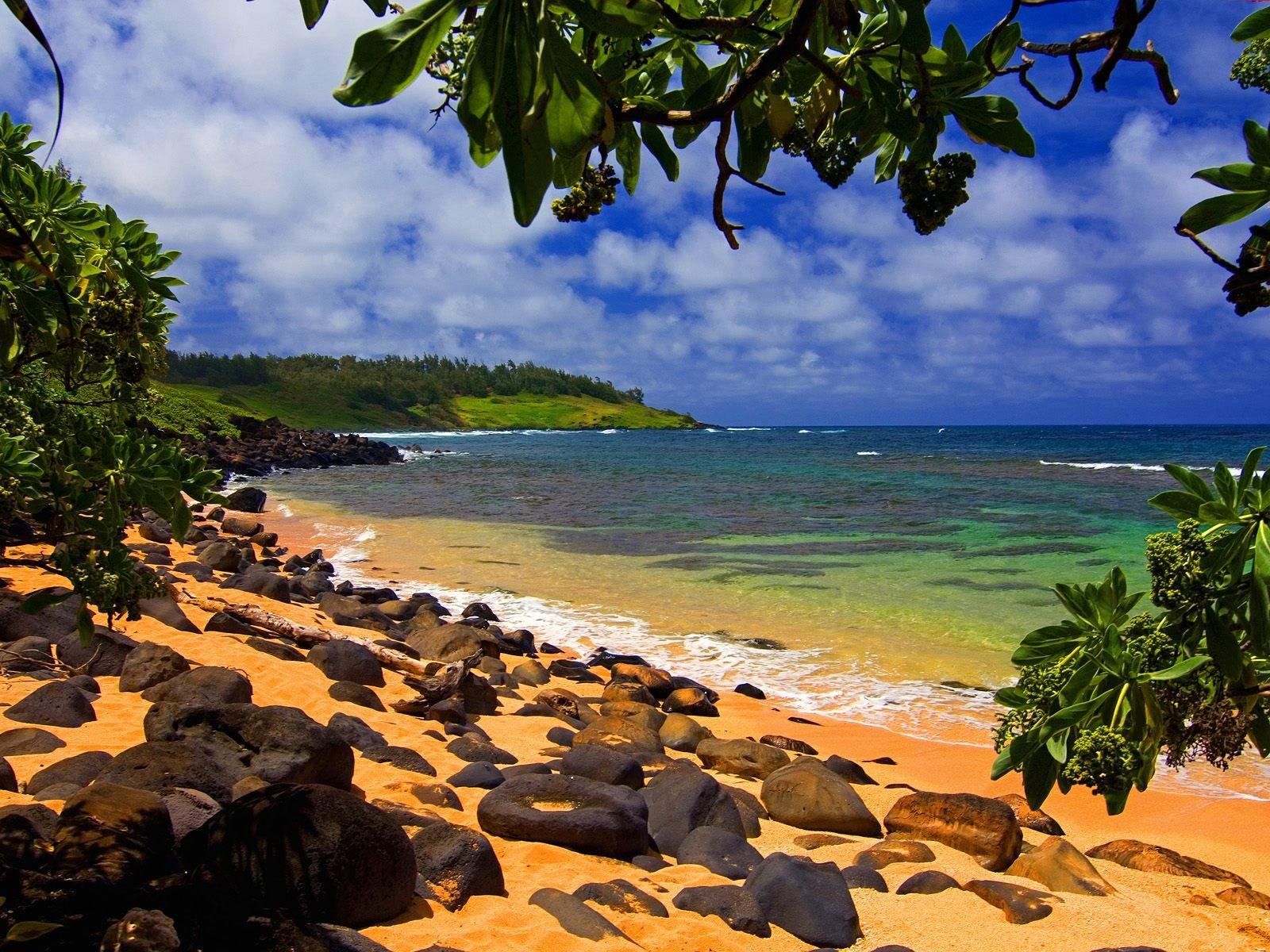 Hawaii beach sunset wallpaper: