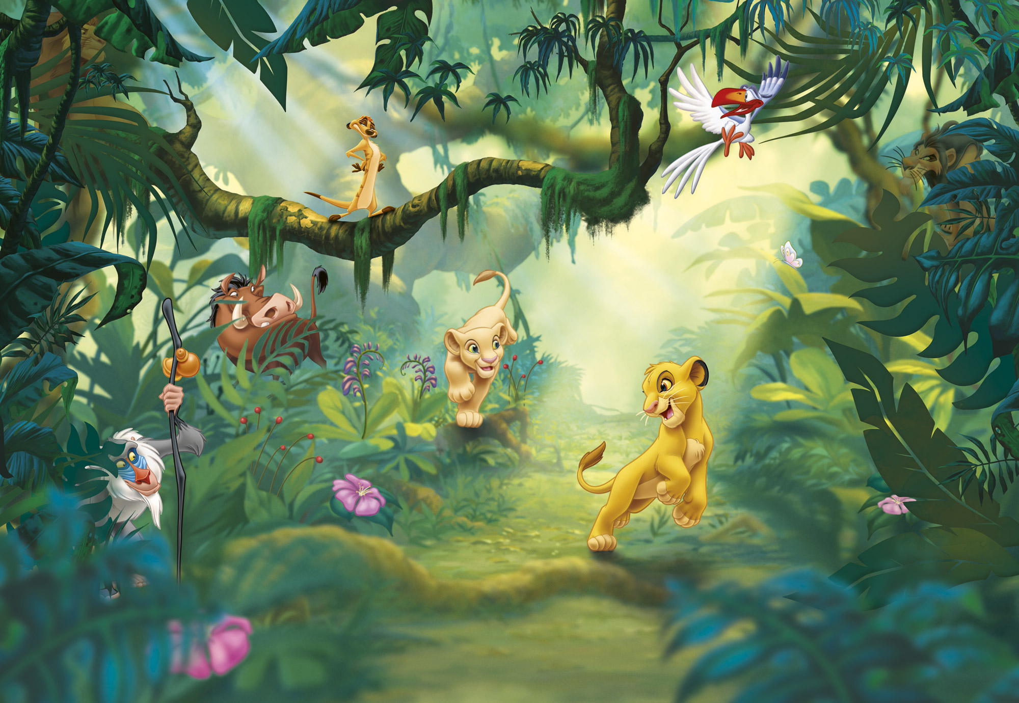 Lion King Wall Mural Photo Wallpaper for Kids Baby Room 368x254cm. Lion King Room Wallpaper   WallpaperSafari