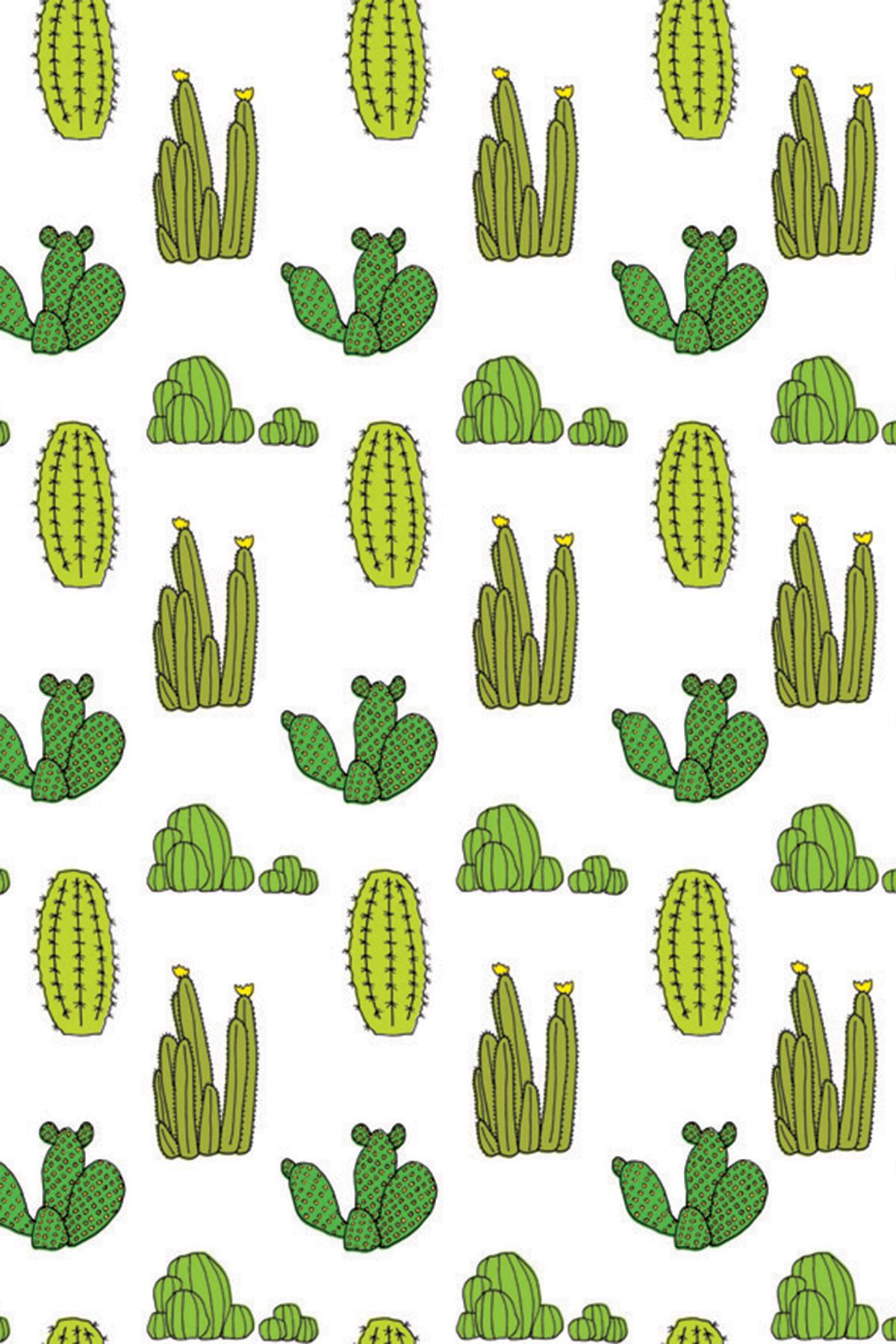 Unduh 770+ Wallpaper Tumblr Cactus Foto HD Paling Keren